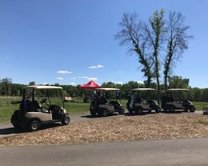 Image of 30th Annual Golf Tournament (June 12, 2019)